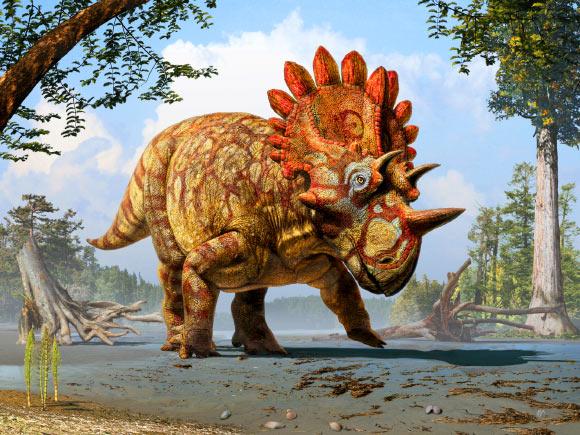 image_2879_1-Regaliceratops-peterhewsi